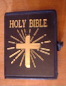 "Doll Bible for 18"" dolls"